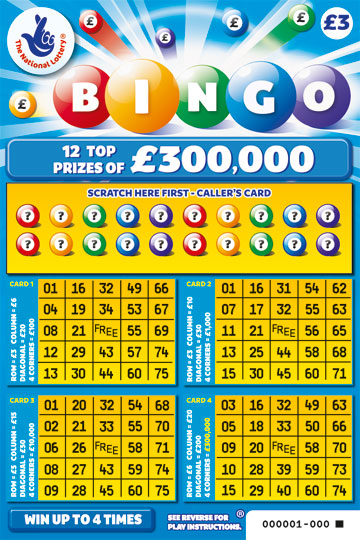 Bingo! Lucky rugby fan wins big!